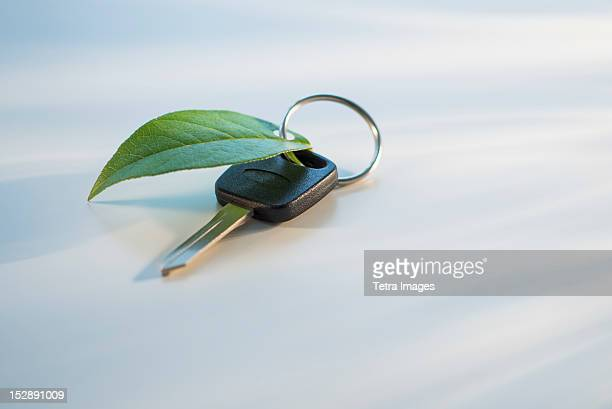 Studio shot of car key with ring and green leaf