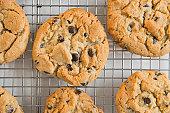 Studio shot of chocolate chip cookies