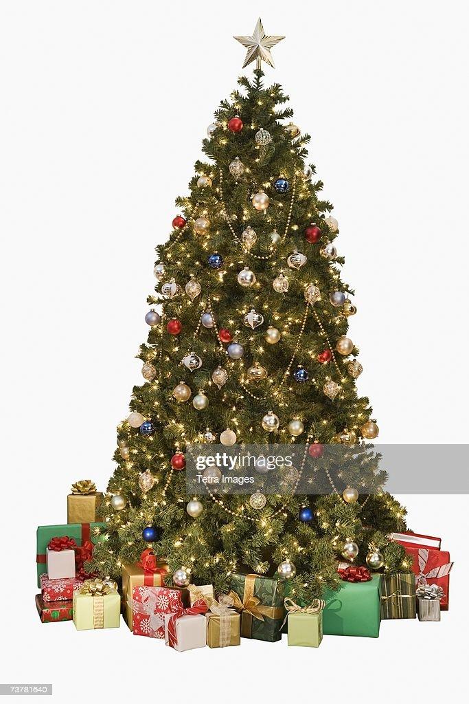 Studio shot of Christmas tree with gifts : Stock Photo