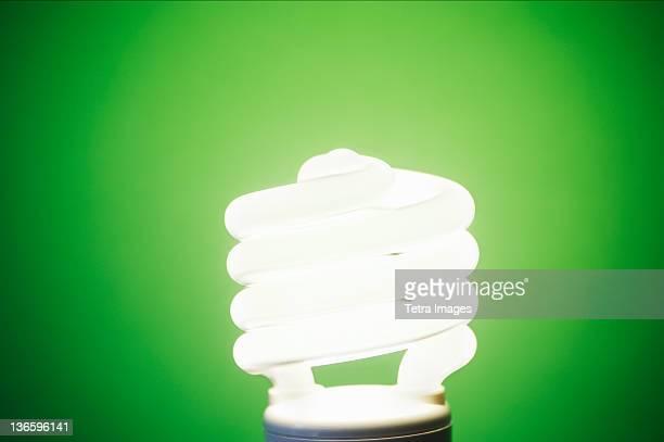 Studio shot of energy efficient lightbulb on green background
