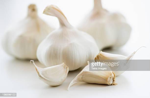 Studio shot of fresh garlic