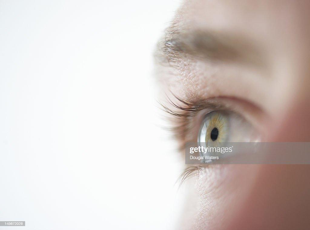 Studio shot of male eye close up. : Stock Photo