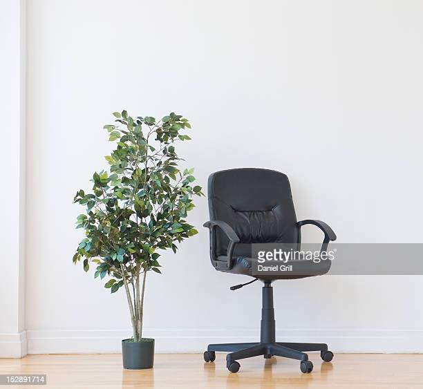 Studio shot of potted plant and office chair