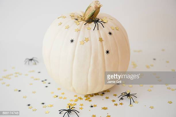 Studio shot of pumpkin with halloween decoration