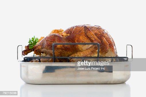 Studio shot of roasted turkey in pan : Bildbanksbilder