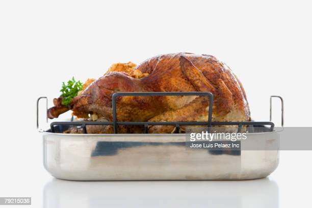 Studio shot of roasted turkey in pan