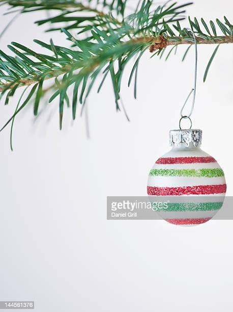 Studio shot of striped Christmas ornament hanging on Christmas tree
