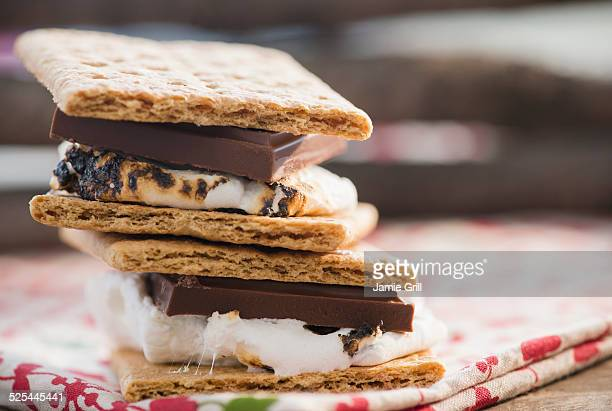 Studio Shot of toasted smores