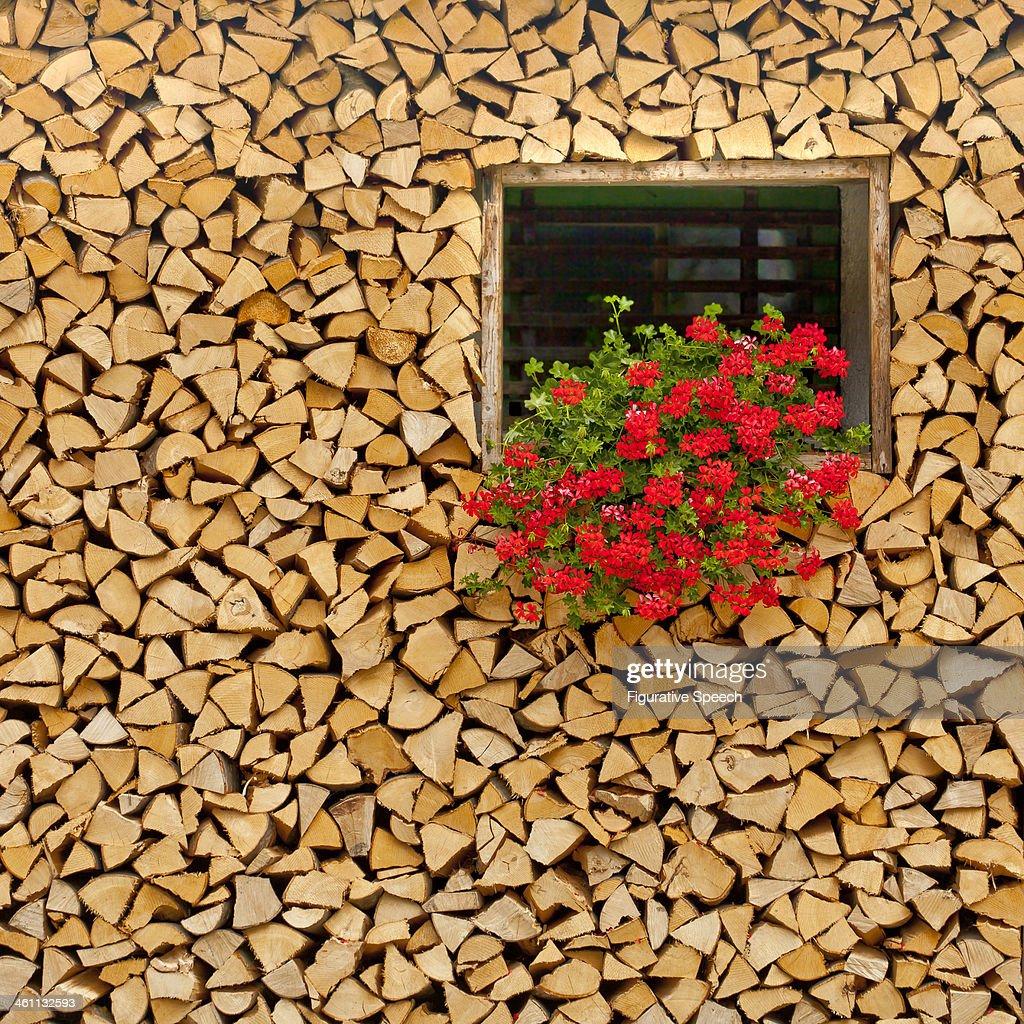 Studor village in Slovenia : Stock Photo
