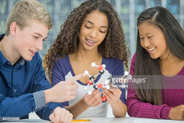 Studying Molecular Models
