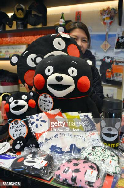 Stuffed dolls water bottles and 'tenugui' hand towels featuring Kumamon line the shelves of a store near Kumamoto Castle on February 15 2017 in...