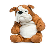 Stuffed English bulldog toy in front of white background