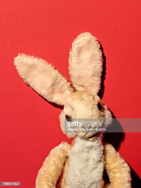 Stuffed Toy Against Red Background