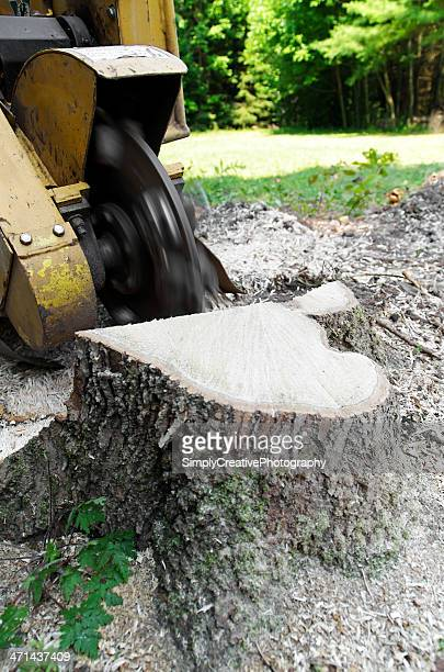 tree cutting machine