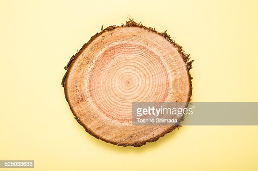 A stump on the yellow background