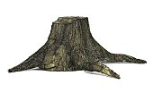 3d render of old stump