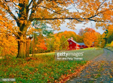 A stunning park in Vermont in autumn
