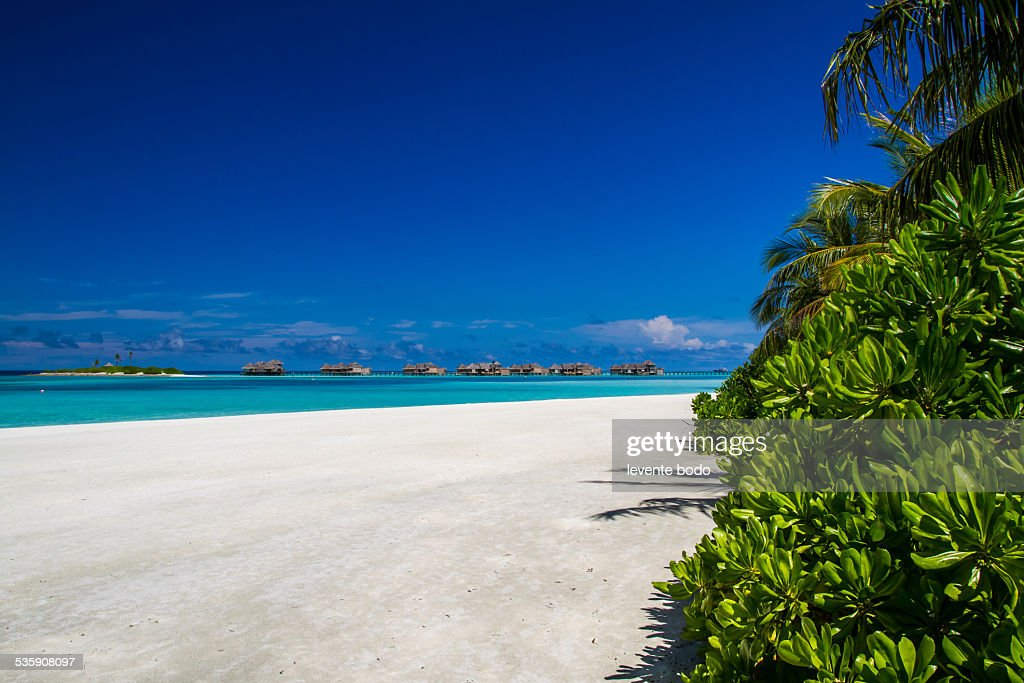 Stunning tropical beach in Maldives : Stock Photo