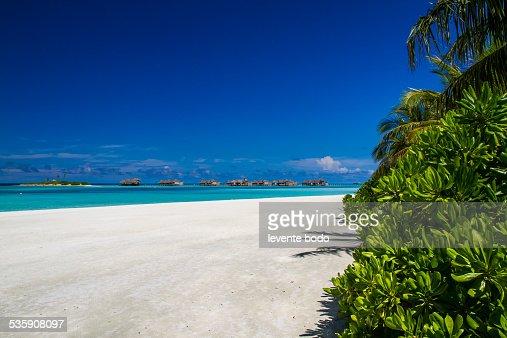 Stunning tropical beach in Maldives : Stock Photo
