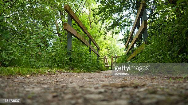 sty on a walkway, low angle, wooden.