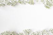 Styled stock photo. Feminine wedding desktop with baby's breath Gypsophila flowers on white background. Empty space. Floral frame, web banner, top view. Picture for blog or social media.