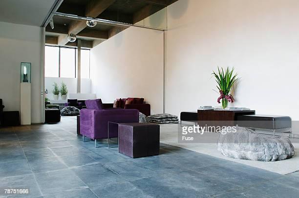 Stylish Contemporary Show Room