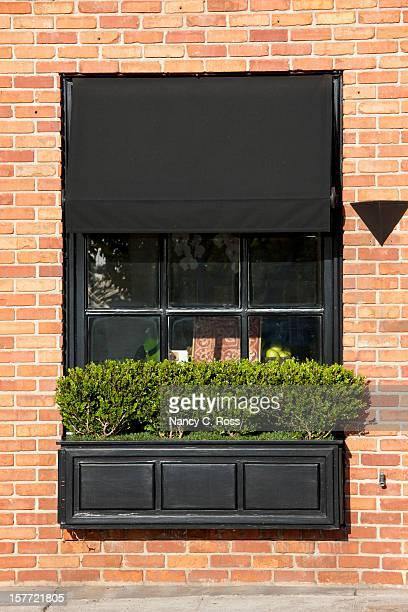 Stylish Window Box and Awning, Street Scene, Urban Living