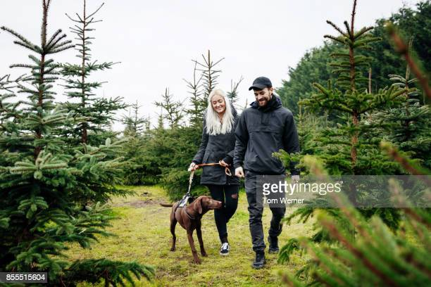 Stylish Young Couple Walking Dog While Looking For Christmas Tree In Pine Forest