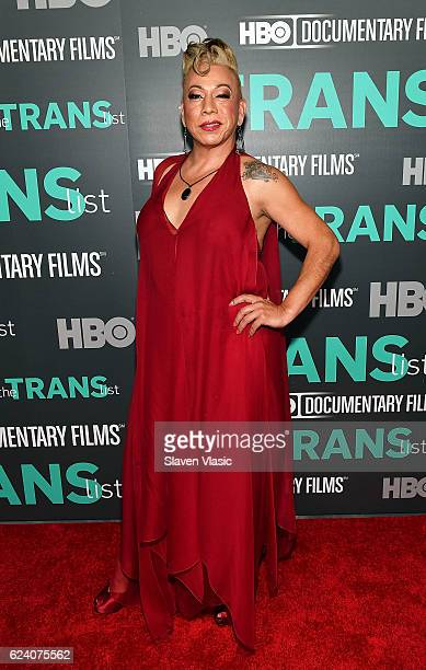 Subject of the documentary Bamby Salcedo attends HBO Documentary Film 'THE TRANS LIST' NY Premiere at Paley Center For Media on November 17 2016 in...