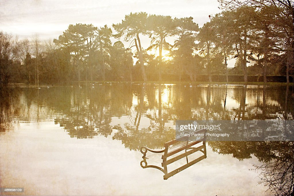A submerged bench in a flooded park