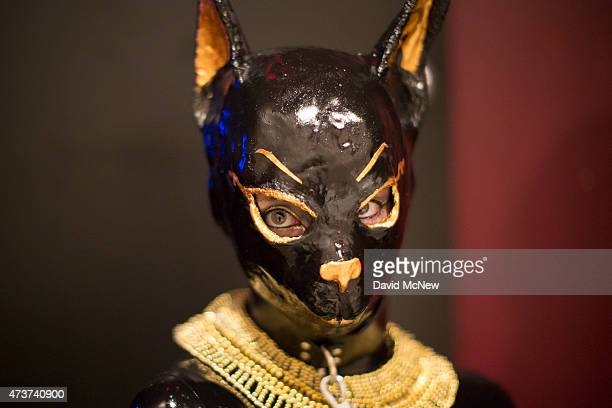 A submissive woman is dressed as an Egyptian cat at a dungeon party during the domination convention DomCon LA in the early morning hours on May 17...
