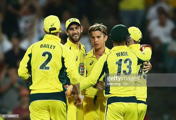 Substitute fielder Glenn Maxwell of Australia celebrates with bowler Adam Zampa of Australia after taking a catch to dismiss Martin Guptill of New...
