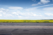 Suburb asphalt road and sun flowers field. Summer landscape
