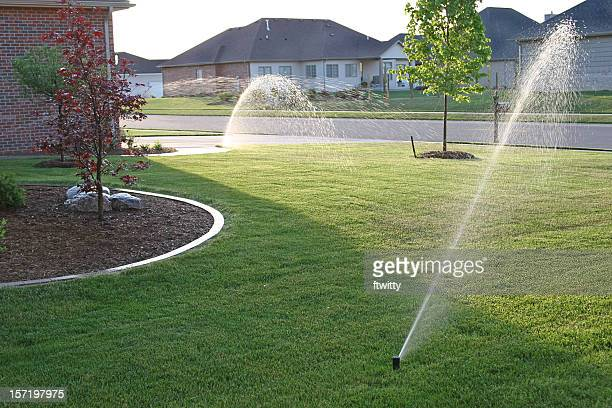Suburban house with a sprinkler system in the front garden