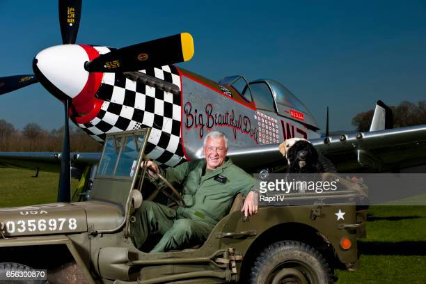 A Successful senior Man with his Mustang P51, Willys Jeep and Pet Dogs smiles contently.