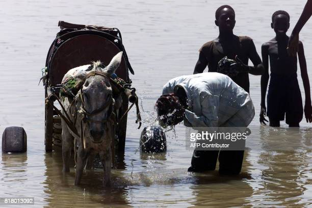 Sudanese bath with their donkey in the Nile river to fight heat and scoarching sun in Khartoum 26 June 2002 where temperature almost reached 50...