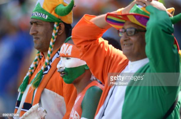 Sudhir Kumar Chaudhary an Indian fan is covered in paint looks on during the ICC Champions Trophy match between Bangladesh and India at Edgbaston...