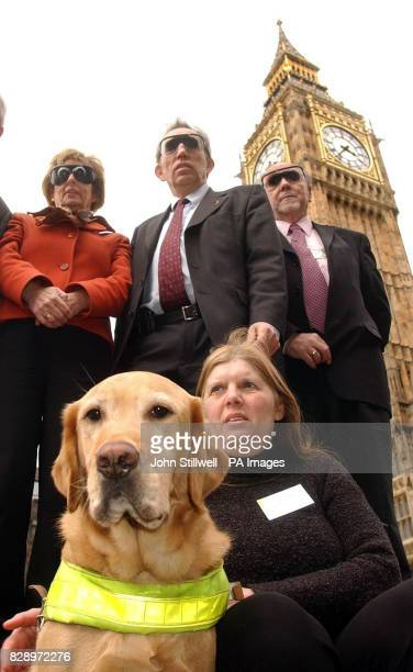 Sue Pett from Putney West London with her guide dog Sam sits in front of Sue Doughty MP for Guildford Neil Gerrard MP for Walthamstow and Jim Dobbin...
