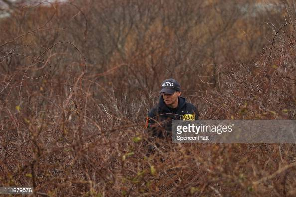 Suffolk County Police officer searches through brush along a stretch of beach highway where they recently found human remains on April 5 2011 in...