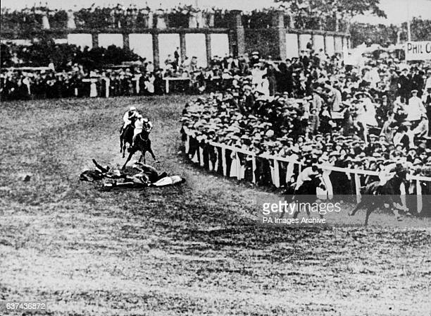 Suffragette Emily Davison lies on the ground after attempting to grab hold of the King George V horse Anmer She later died from her injuries
