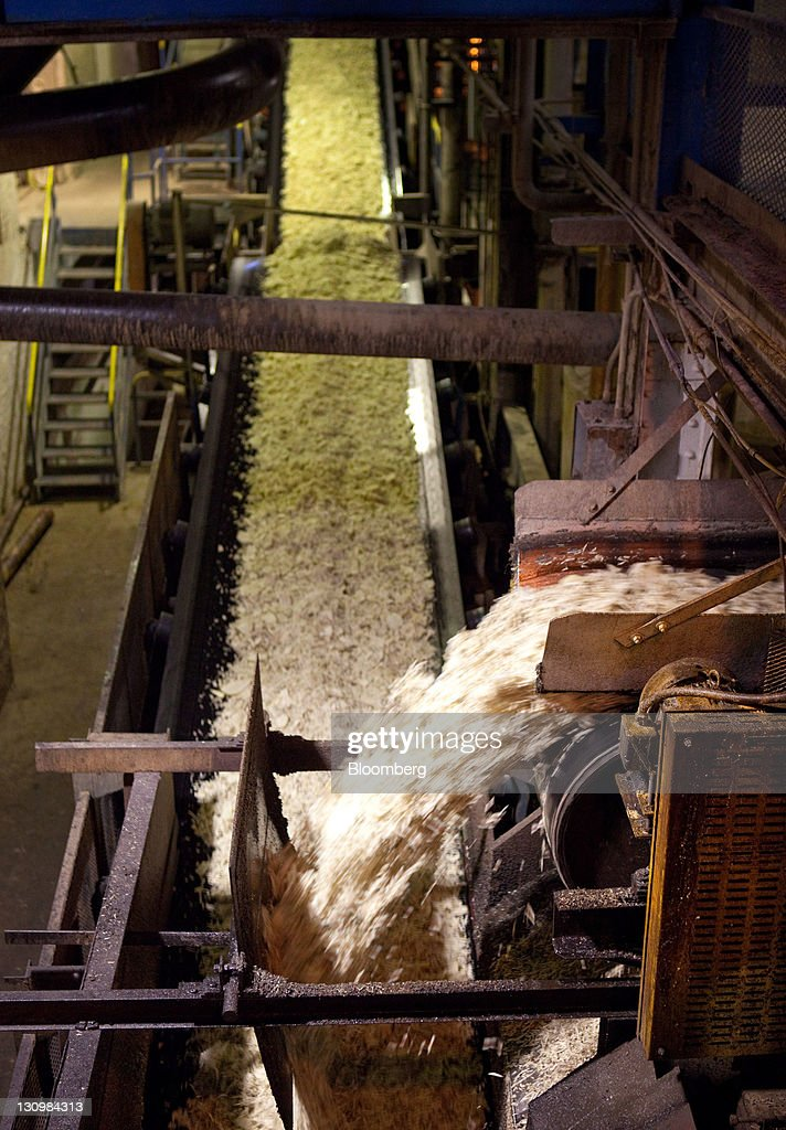 Sugar beets tumble out of a machine that cuts them into small pieces before being processed into molasses and white crystalized sugar at the Michigan Sugar Co. plant in Bay City, Michigan, U.S., on Monday, Oct. 24, 2011. U.S. sugar supplies this year will fall to the lowest since record-keeping began in 1960 as consumption rises and a smaller beet crop limits supplies left from last season, according to a U.S. Department of Agriculture report released earlier this month. Photographer: Adam Bird/Bloomberg via Getty Images