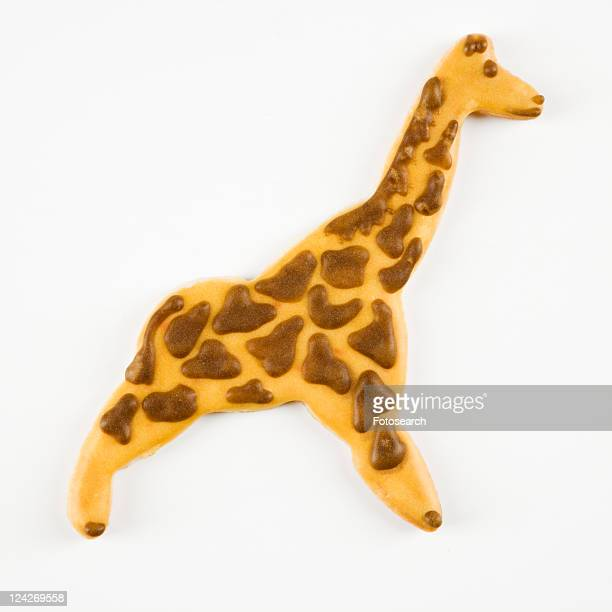 Sugar cookie in shape of giraffe with decorative icing.