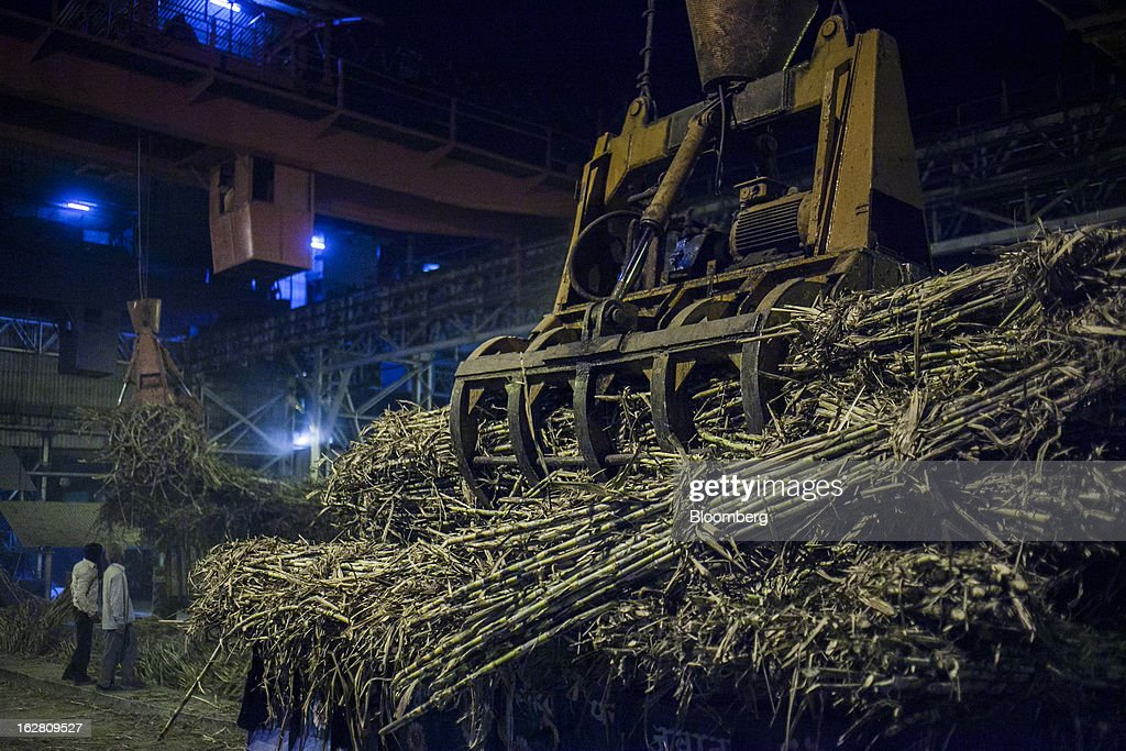 Sugarcane is loaded onto a conveyor belt in the evening at the Simbhaoli Sugars Ltd. mill in Ghaziabad, Uttar Pradesh, India, on Tuesday, Feb. 26, 2013. India, the world's biggest sugar producer, plans to seek a consensus among various ministries on ending four-decade old state controls on the domestic industry, Food Minister K.V. Thomas said. Photographer: Prashanth Vishwanathan/Bloomberg via Getty Images