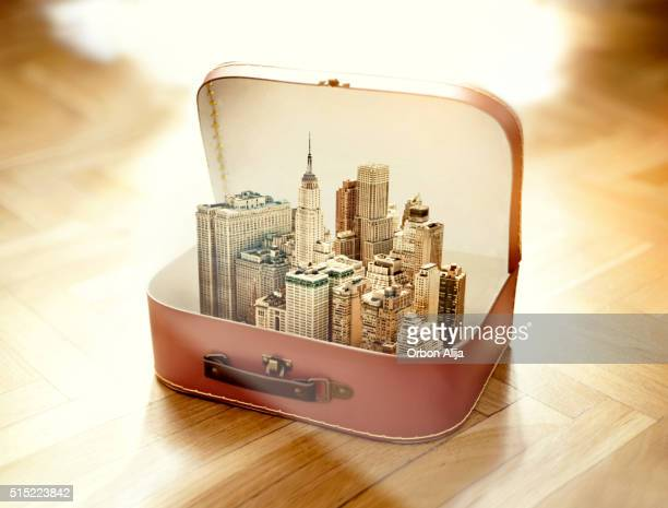 Suitcase with New York city