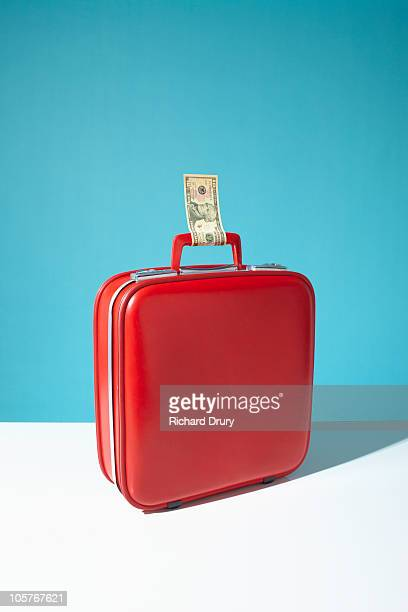 suitcase with ten dollar bill as luggage label