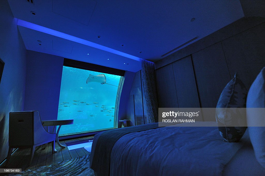 A suite that offers a window panel view of South East Asia aquarium, the world's largest oceanarium in Sentosa Resort World marine life park, is seen during a media preview in Singapore on November 20, 2012. The aquarium will be home to 100,000 marine animals of over 800 species in 45 million litres of water that will opens to the public on November 22.
