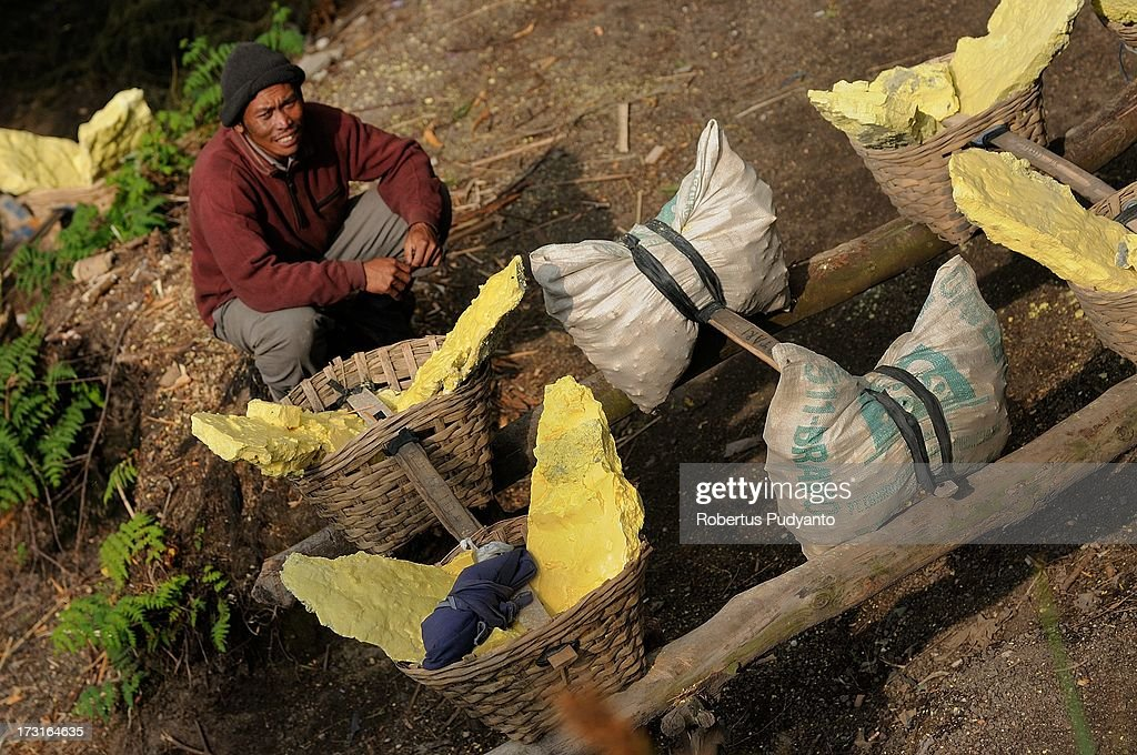 A sulfur miner carrying baskets of sulfur takes a break as he walks to the weighing station on July 9, 2013 in Arjuna, Java, Indonesia. Ijen Crater, which is known as Kawah Ijen, is located in the Ijen Volcano region, bordered by Banyuwangi and Bondowoso in East Java Province, Indonesia. Ijen Volcano is 2,600 meters tall (8,660 ft), topped with a large caldera and a 200 meter deep lake of sulfuric acid. The quietly active volcano emits gases through fumaroles inside the crater, and local miners have tapped those gases to earn a living. Stone and ceramic pipes cap the fumaroles, and inside the sulfur condenses into a molten red liquid, dripping back down and solidifying into pure sulfur. Miners hack chunks off with steel bars, braving extremely dangerous gases and liquids with minimal protection, then load up as much as they can carry for the more than 3 kilometers to the weighing station. Loads can weigh from 50 to 90 kg (100 - 200 lbs), and a single miner might make as many as two or three trips return in a day. At the end of a long day, miners take home approximately Rp. 50,000. The sulfur is then used for vulcanizing rubber, bleaching sugar and other industrial processes nearby. Sulfur widely used in fertilizer industry, cosmetics, skin disease drug, insecticides, paper, paints, plastics, petroleum processing, rubber and tire industry, sugar industry, batteries, chemicals industrial, explosives, weaving, film and photography, and also in metal or steel industry.