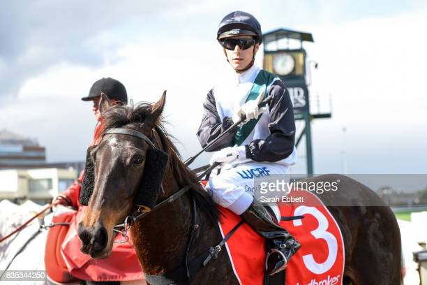 Sullivan Bay ridden by Cory Parish returns after winning the Legacy 2017 Badge Appeal Handicap at Caulfield Racecourse on August 19 2017 in Caulfield...