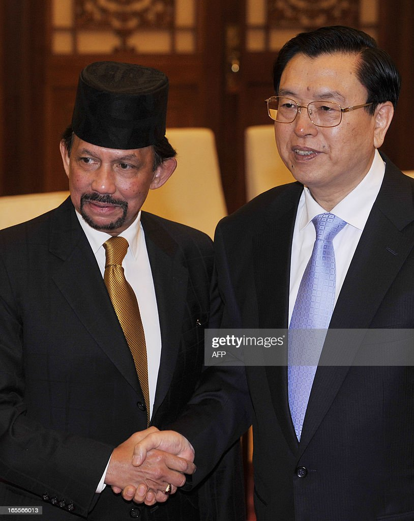 Sultan Hassanal Bolkiah of Brunei (L) shakes hands with Chinese Chairman of the National People's Congress Zhang Dejiang at Great Hall of the People in Beijing on April 5, 2013.