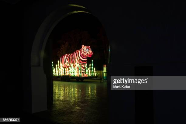 Sumatran tiger installation one of the giant illuminated animal sculptures on display at Taronga Zoo is seen during a media call ahead of Vivid...